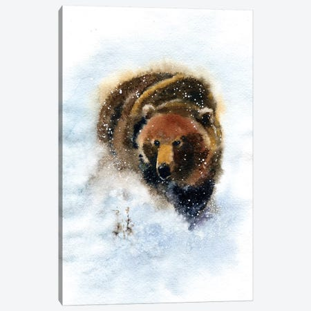 Bear Canvas Print #IGN5} by Marina Ignatova Art Print
