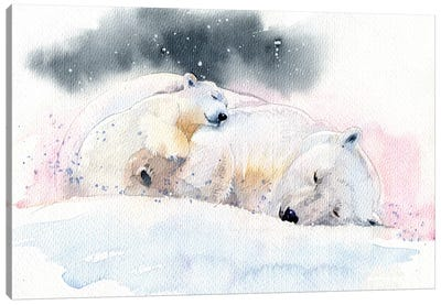 Sleeping Bears Canvas Art Print