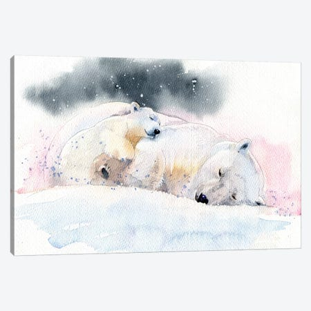 Sleeping Bears Canvas Print #IGN62} by Marina Ignatova Art Print