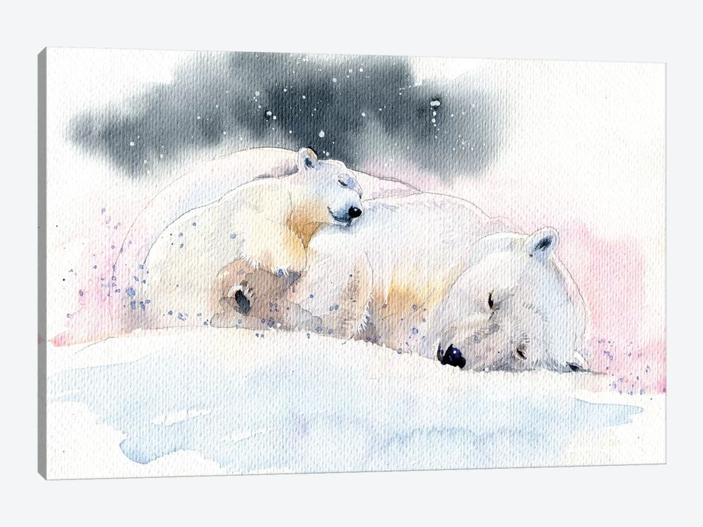 Sleeping Bears by Marina Ignatova 1-piece Canvas Wall Art