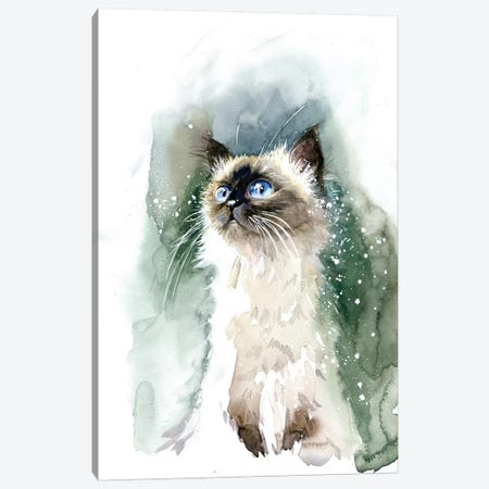 Kitten With Blue Eyes Canvas Print #IGN65} by Marina Ignatova Canvas Wall Art