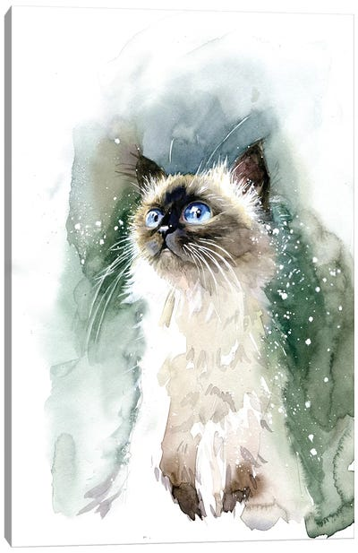 Kitten With Blue Eyes Canvas Art Print
