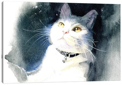 White Cat Canvas Art Print