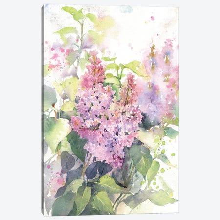 Lilac 3-Piece Canvas #IGN71} by Marina Ignatova Canvas Wall Art
