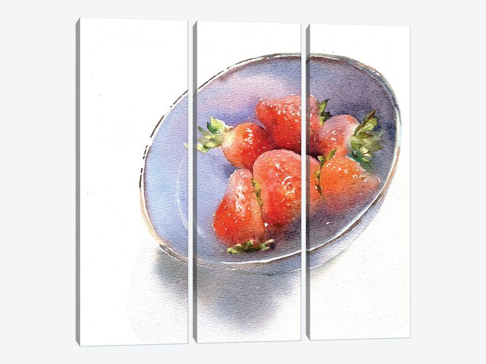 Strawberry by Marina Ignatova 3-piece Canvas Artwork