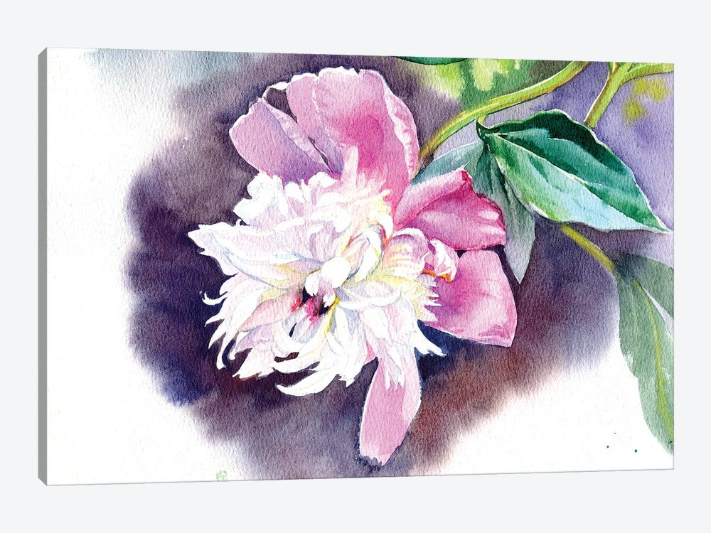 Peony II by Marina Ignatova 1-piece Canvas Art