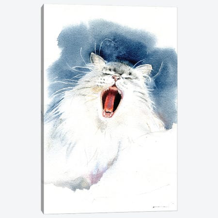 Yawning Cat Canvas Print #IGN88} by Marina Ignatova Canvas Art Print