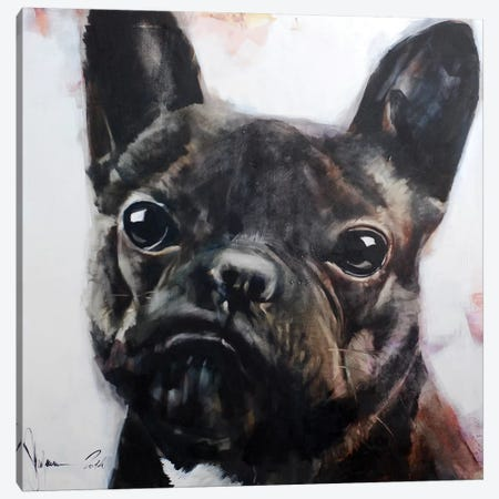 Dog II Canvas Print #IGS15} by Igor Shulman Canvas Wall Art