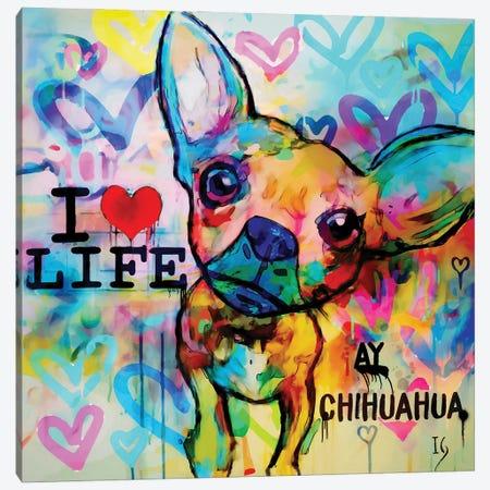 Ay Chihuahua Canvas Print #IGU18} by Ivan Guaderrama Canvas Art Print