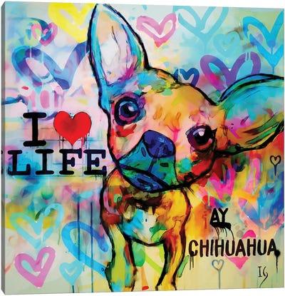 Ay Chihuahua Canvas Art Print
