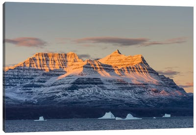 Greenland. Scoresby Sund. Gasefjord, Alpenglow on the mountain with iceberg. Canvas Art Print