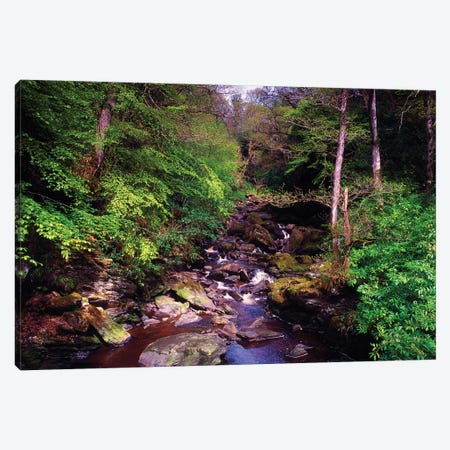 Co Derry, Burntollet River, Ness Woods, Canvas Print #IIM19} by Irish Image Collection Canvas Wall Art