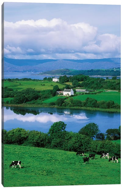 Bantry Bay, Co Cork, Ireland Canvas Art Print