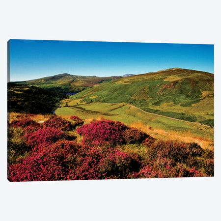 Wicklow Way, Co Wicklow, Ireland, Valley Near Luggala Canvas Print #IIM82} by Irish Image Collection Canvas Print