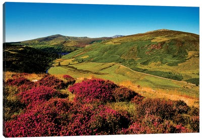 Wicklow Way, Co Wicklow, Ireland, Valley Near Luggala Canvas Art Print