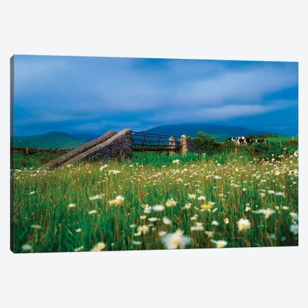 Bridge At Castlegregory, Dingle Peninsula, Co Kerry, Ireland Canvas Print #IIM8} by Irish Image Collection Canvas Print