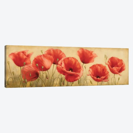 Poppies Grace I Canvas Print #ILE10} by Igor Levashov Canvas Wall Art