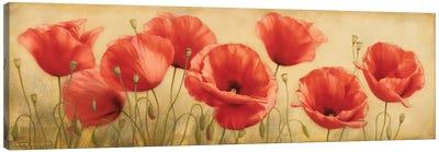 Poppies Grace I Canvas Art Print