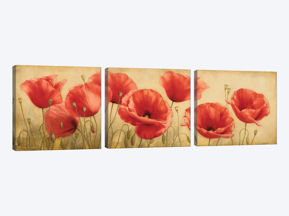 Poppies Grace I by Igor Levashov 3-piece Canvas Art Print