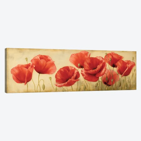 Poppies Grace II Canvas Print #ILE11} by Igor Levashov Canvas Art