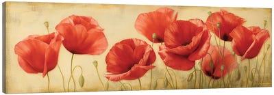 Poppies Grace II Canvas Art Print