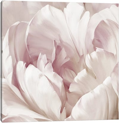 Intimate Blush I Canvas Art Print