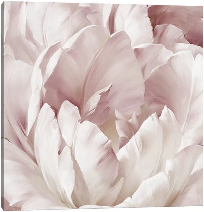 Intimate Blush III Canvas Art Print