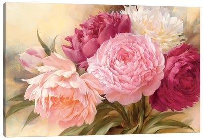 Sweet Memory II Canvas Art Print