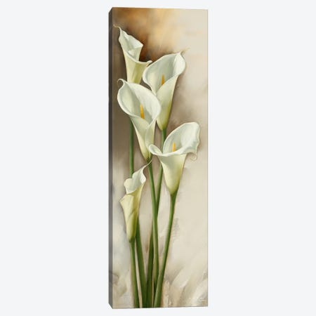 Callas Gracieux I Canvas Print #ILE1} by Igor Levashov Canvas Art