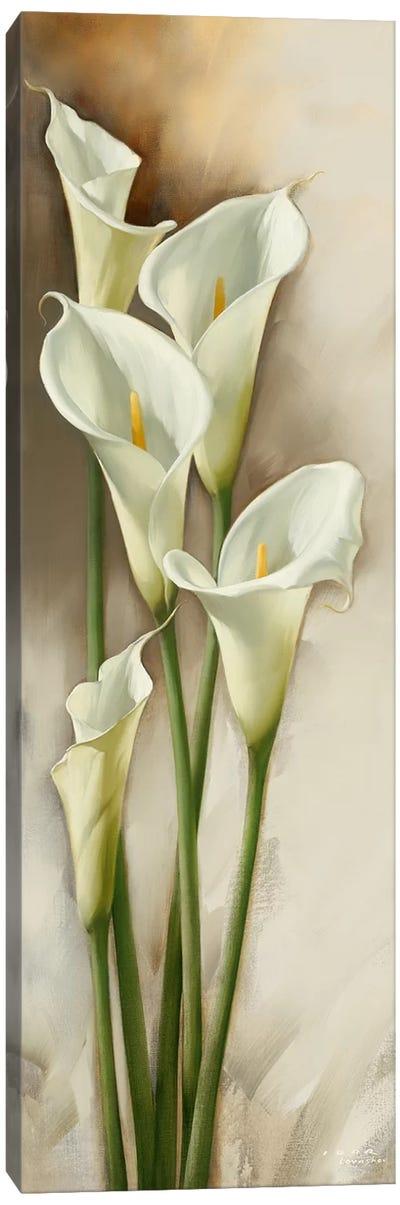 Callas Gracieux I Canvas Art Print