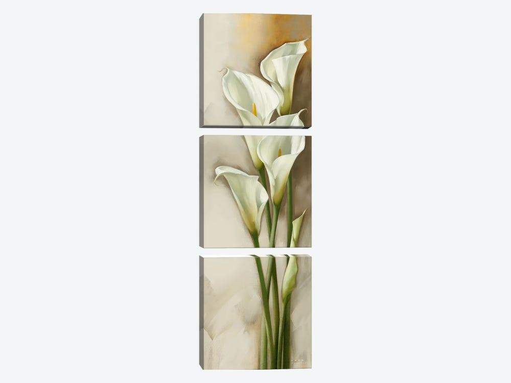 Callas Gracieux II by Igor Levashov 3-piece Canvas Print