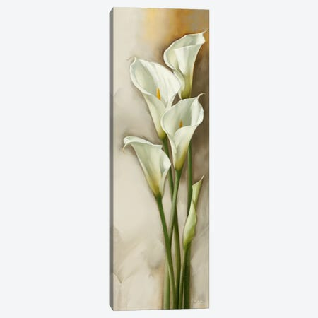 Callas Gracieux II Canvas Print #ILE2} by Igor Levashov Canvas Art