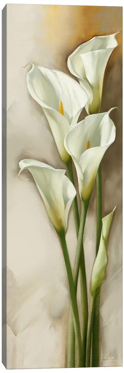 Callas Gracieux II Canvas Art Print