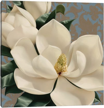 Dolce Magnolia Canvas Art Print