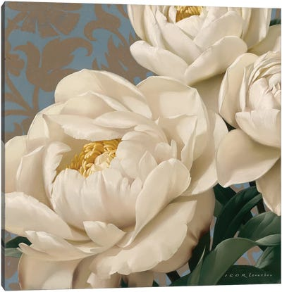 Dolce Peonia Canvas Art Print