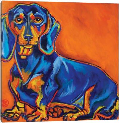 Blue Dachshund Canvas Art Print