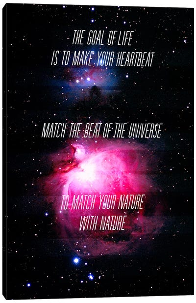 Heartbeat of the Universe Canvas Art Print