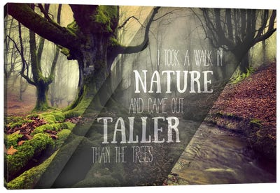 Taller Than the Trees Canvas Art Print