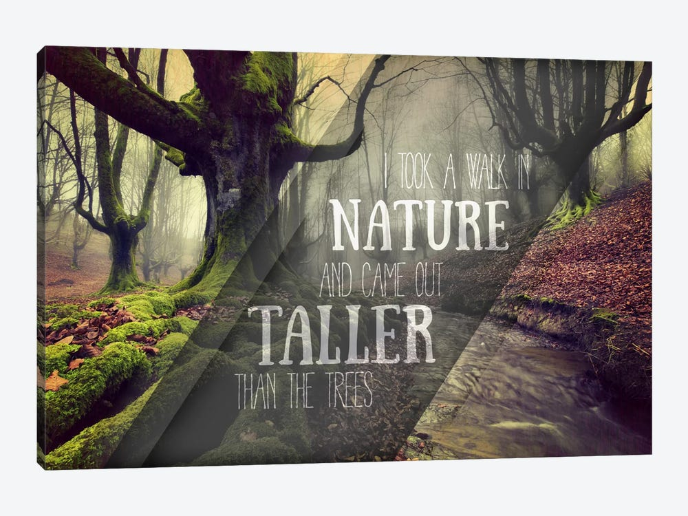 Taller Than the Trees by 5by5collective 1-piece Canvas Wall Art
