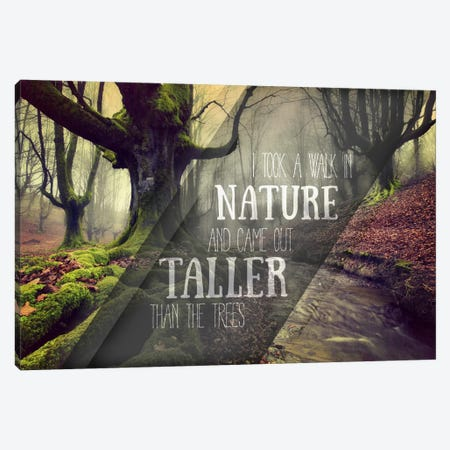 Taller Than the Trees Canvas Print #ILS23} by 5by5collective Canvas Art Print