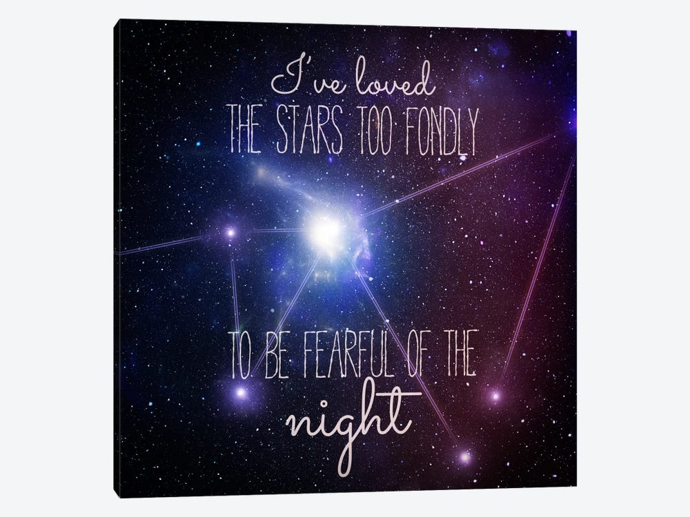 Loving the Stars 1-piece Canvas Wall Art