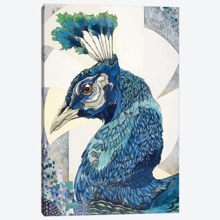 Peacock II Canvas Print #IMN13} by Irene Meniconi Canvas Artwork