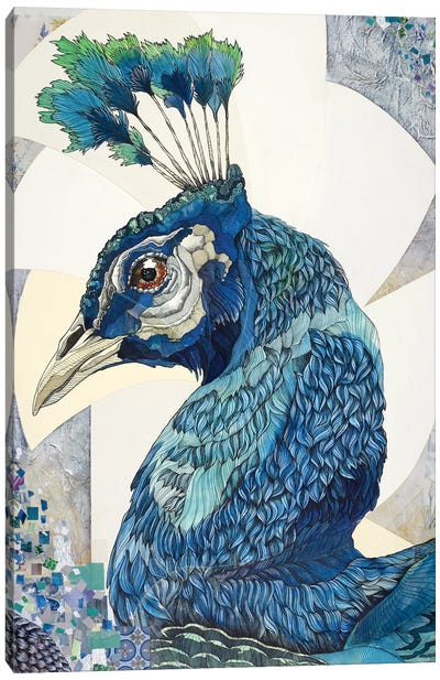 Peacock II Canvas Art Print