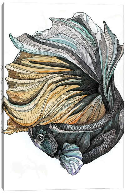 Siamese Fighting Fish II Canvas Art Print