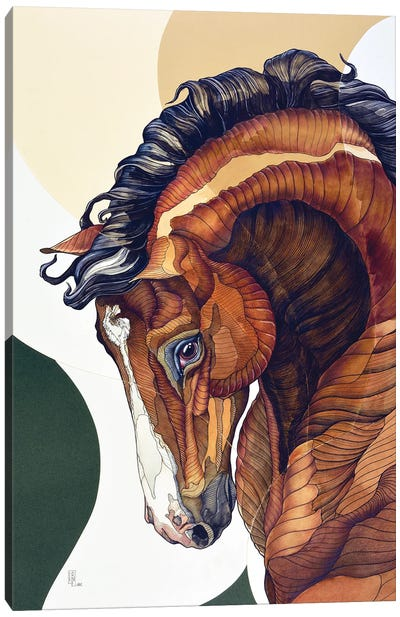 Being Horse: The Bay Horse Canvas Art Print