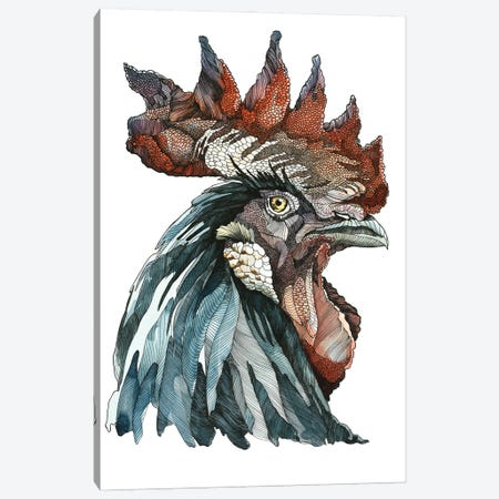 Black Rooster Canvas Print #IMN4} by Irene Meniconi Art Print