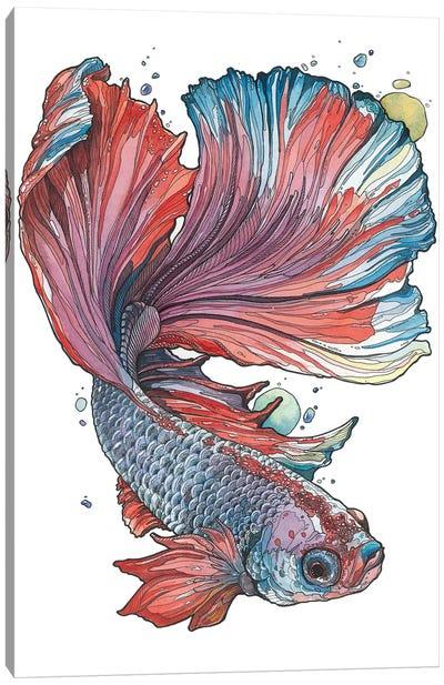 Siamese Fighting Fish I Canvas Art Print