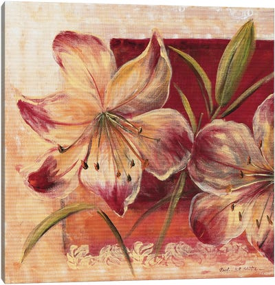 Classic Flower Lll Canvas Art Print