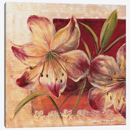 Classic Flower Lll Canvas Print #INA12} by Katharina Schöttler Art Print