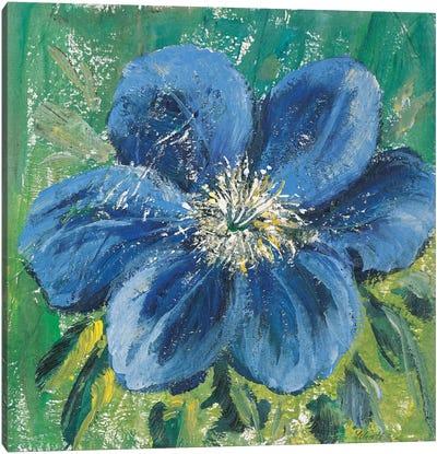 Meconopsis Canvas Art Print